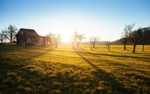 Разпростира ли ипотеката върху имота действието си върху новопостроените сгради?