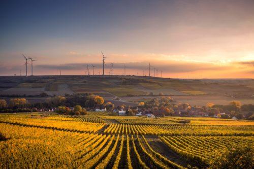 Разлика между договор за аренда и договор за наем на земеделска земя